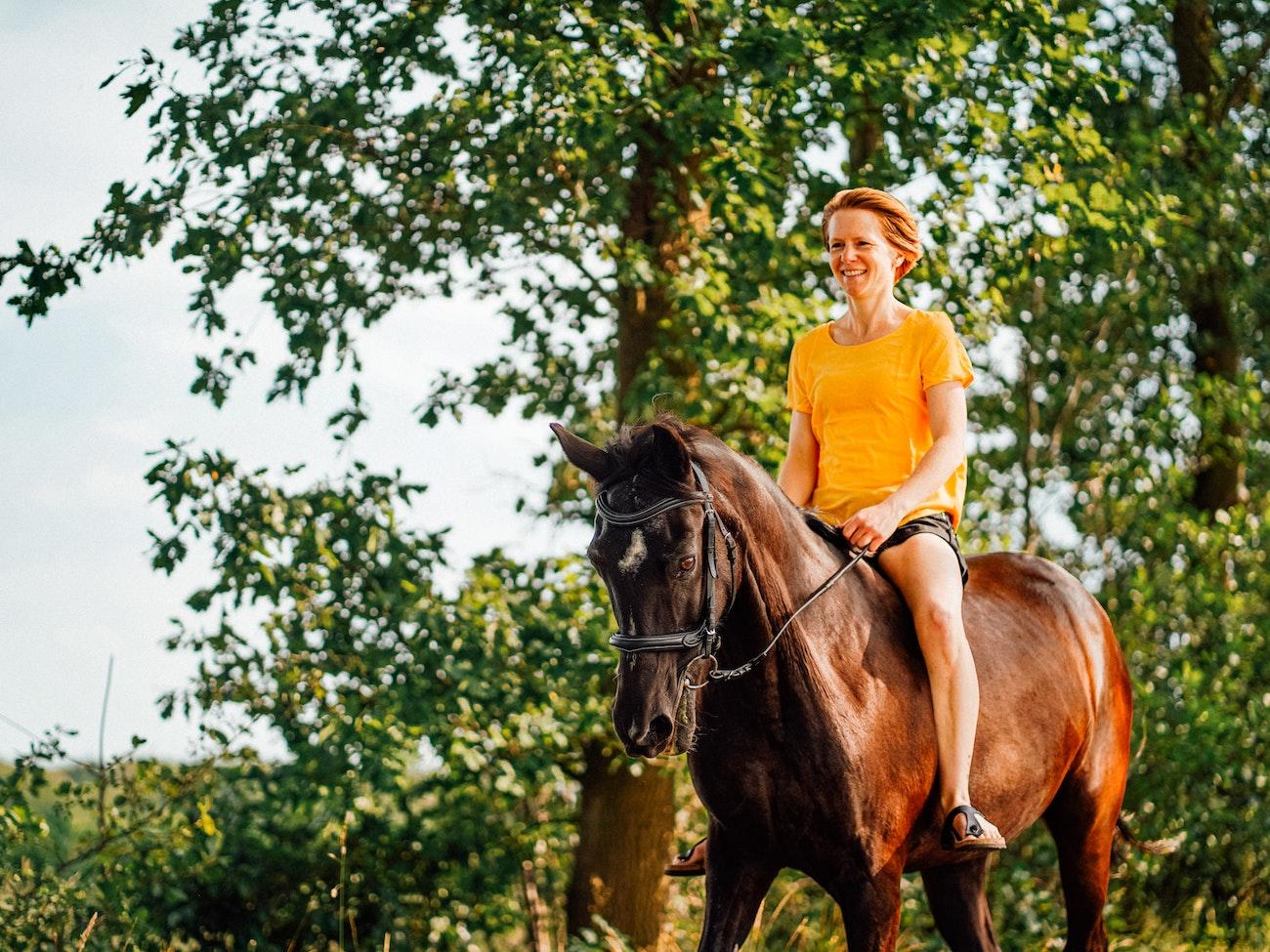 CAMPING CADENIERES_activite-equitation
